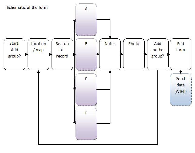 Schematic_multi-form